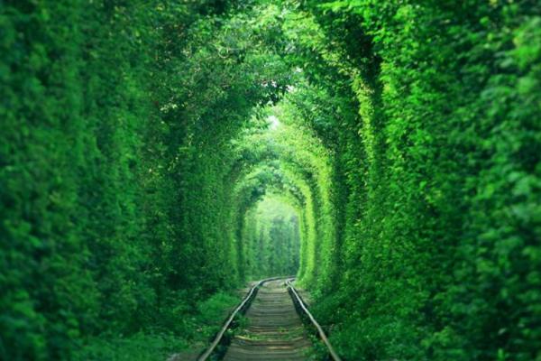 爱情隧道南京最清新的铁路,情侣私会的天堂